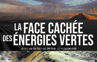 Preview of The dark side of green energies