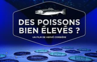 Preview of Des poissons bien élevés ?