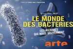 Poster of Bacterial world - microbes that rule our world
