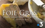 Poster of Foie gras, inquiry and stakes of a luxury product