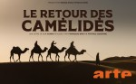 Poster of The return of the camelids