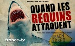 Affiche de Quand les requins attaquent