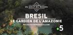 Affiche de BRESIL : Le gardien de l'Amazonie
